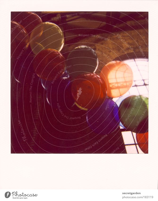 upstairs. Colour photo Multicoloured Interior shot Polaroid Deserted Copy Space top Copy Space bottom Sunlight Back-light Worm's-eye view Event