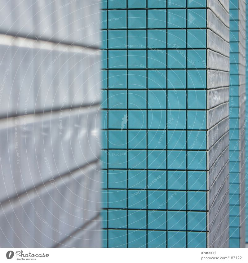Blue House (Residential Structure) Architecture Building Abstract Facade Arrangement Manmade structures Tile Square Entrance Seam Blur Mosaic
