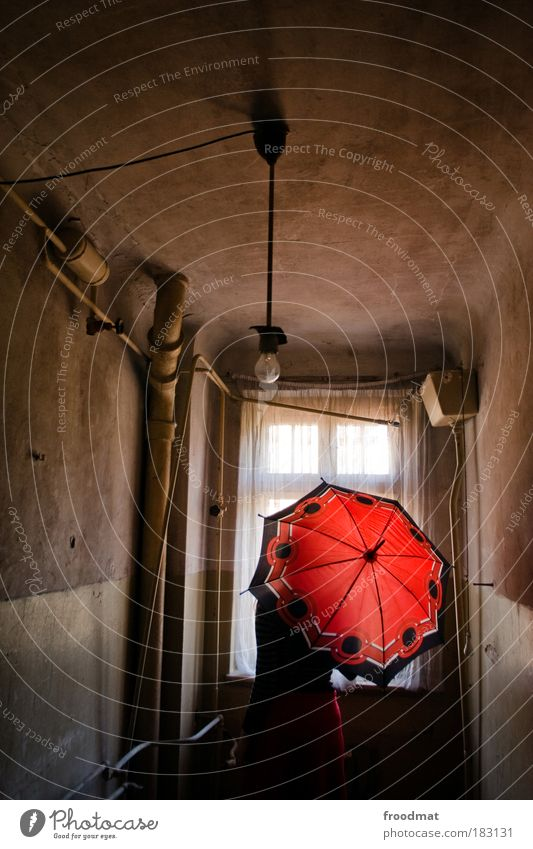 Human being Red Loneliness Dark Window Dream Sadness Dirty Poverty Back Retro Bathroom Transience Umbrella Toilet