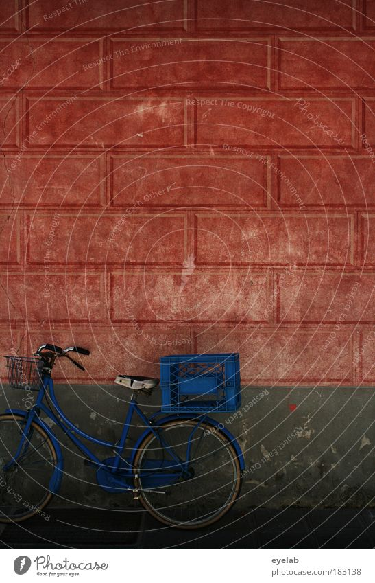 Old Blue House (Residential Structure) Wall (building) Architecture Movement Wall (barrier) Building Bicycle Facade Dirty Broken Retro Transience Kitsch