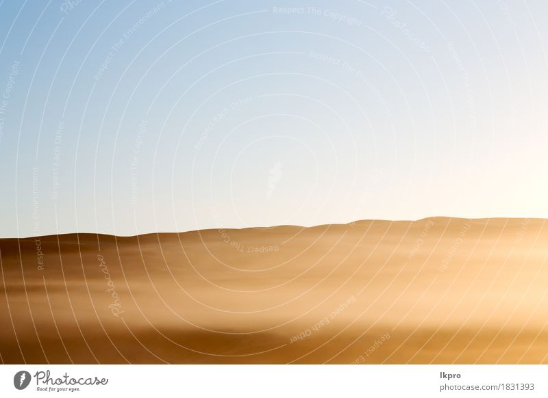 sand dune in oman old desert rub al khali Sky Nature Vacation & Travel Plant Summer Beautiful White Landscape Loneliness House (Residential Structure) Black