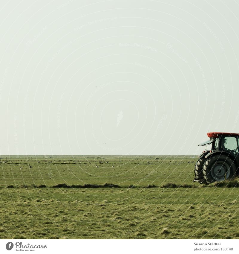 Plant Red Work and employment Meadow Grass Landscape Field Coast Driving Island Technology Agriculture Harvest Machinery North Sea