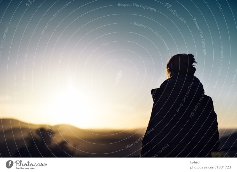 horizon Feminine Young woman Youth (Young adults) 1 Human being Nature Landscape Sky Cloudless sky Horizon Sunrise Sunset Beautiful weather Forest Hill Coat