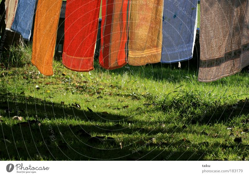 ...AUTUMN LAUNDRY... Autumn Laundry Towel Meadow Leaf Sun Grass Blue Green Yellow Orange White Shadow Wind Light