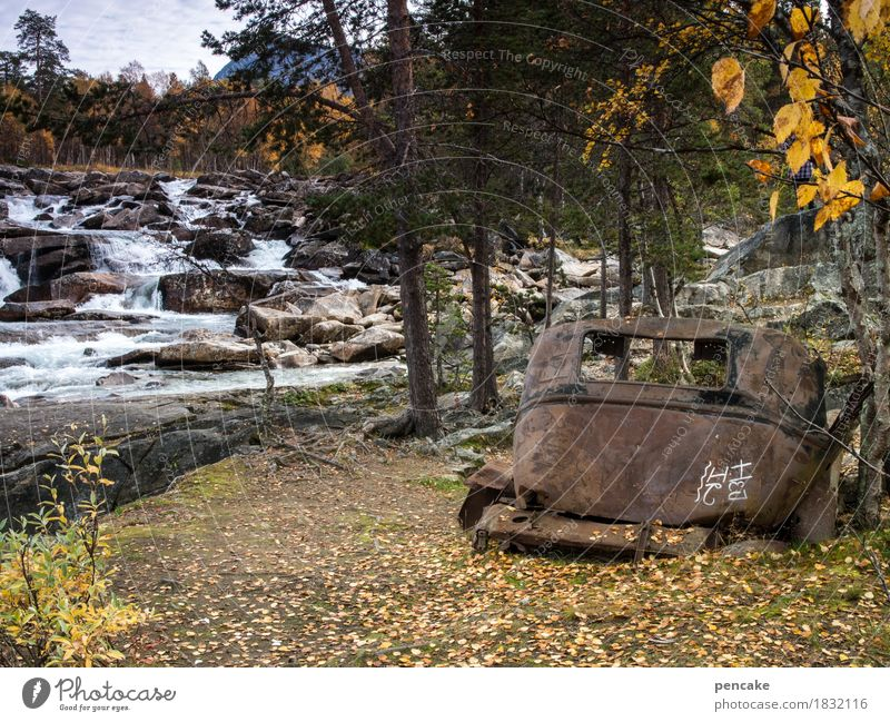 from resting and rusting Art Sculpture Nature Landscape Elements Water Autumn Forest River Waterfall Vehicle Car Vintage car Historic Naked Retro Trashy Idyll