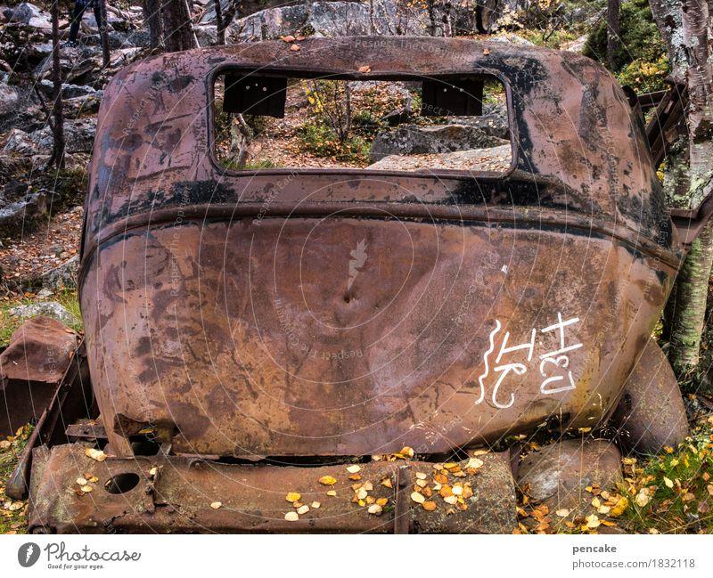 R.I.P. Nature Autumn Forest Vehicle Car Vintage car Characters Authentic Historic Broken Original Trashy Esthetic Bizarre Nostalgia Luxury Stagnating Death Past