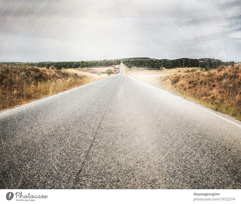 Road and dramatic cloudy sky Vacation & Travel Trip Freedom Summer Nature Landscape Sky Horizon Grass Meadow Town Transport Street Highway Speed Blue Green