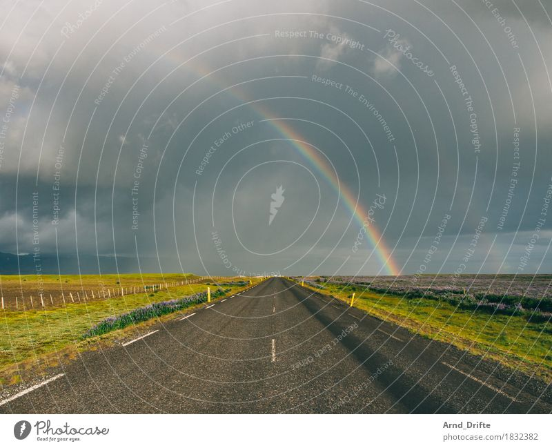 Street and rainbow in Iceland Vacation & Travel Tourism Trip Adventure Far-off places Freedom Environment Landscape Plant Air Sky Clouds Storm clouds Weather