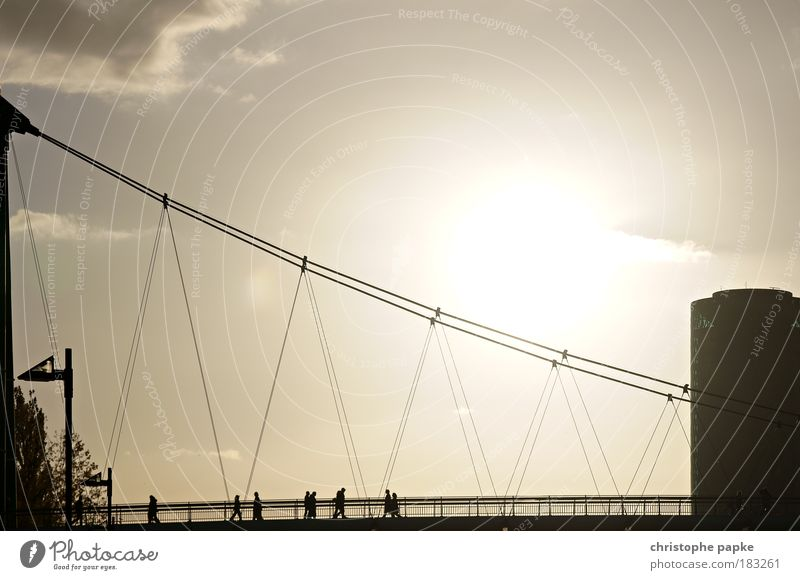 the bridge Subdued colour Exterior shot Copy Space right Copy Space top Dawn Evening Twilight Contrast Silhouette Sunrise Sunset Back-light Central perspective