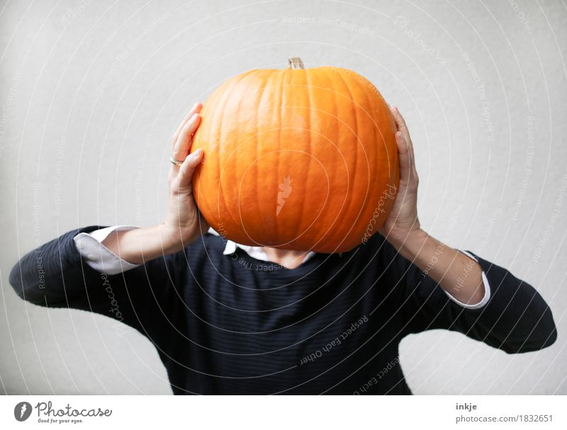 pumpkin head Pumpkin time Tradition Hallowe'en Orange Creativity Idea Autumn To hold on Uphold Heavy Large Funny