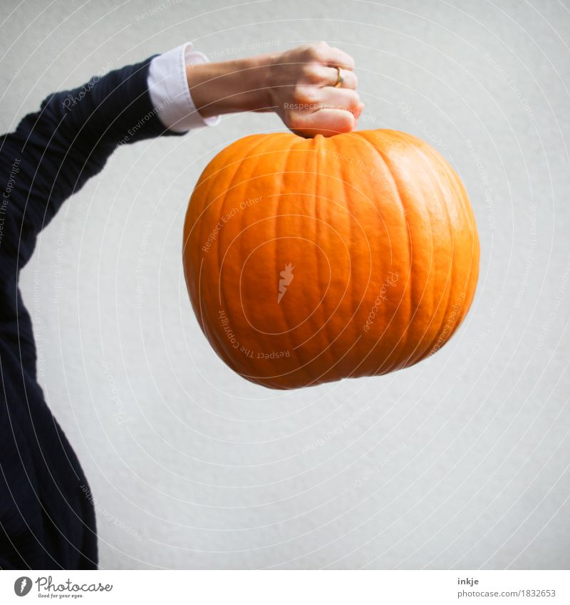 large calibres Pumpkin Pumpkin time Nutrition Leisure and hobbies Thanksgiving Hallowe'en Woman Adults Life Arm Hand 1 Human being Autumn To hold on Carrying