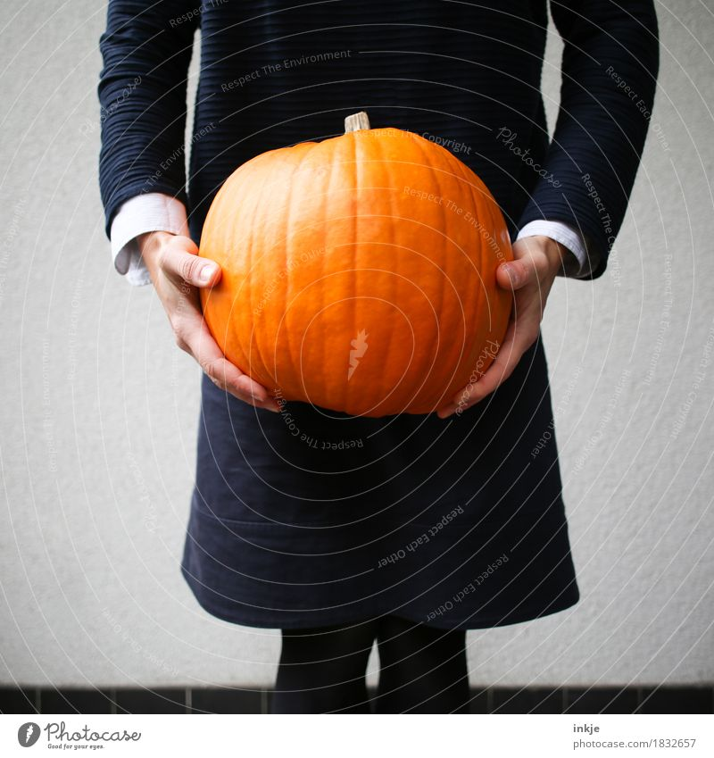 bizarre times Pumpkin time Lifestyle Leisure and hobbies Hallowe'en Body 1 Human being To hold on Stand Carrying Large Orange Heavy Retentive Colour photo