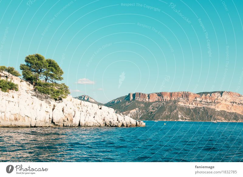 Les calanques de Cassis Lifestyle Leisure and hobbies Driving Calanque d'en Vau Mediterranean sea Stone pine Bay Limestone Wall of rock cap canaille Warmth