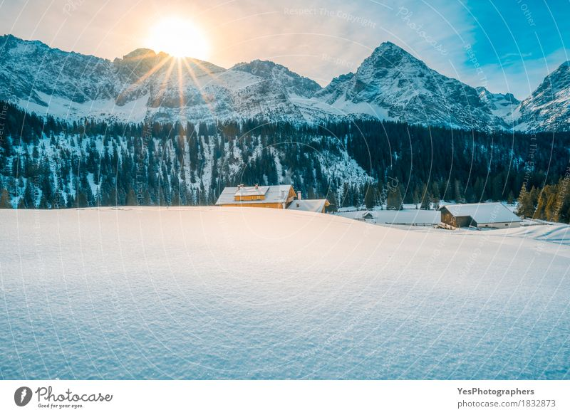 Alpine winter on a sunny day Nature Vacation & Travel Blue White Sun Tree Landscape House (Residential Structure) Winter Forest Mountain Snow Design Tourism