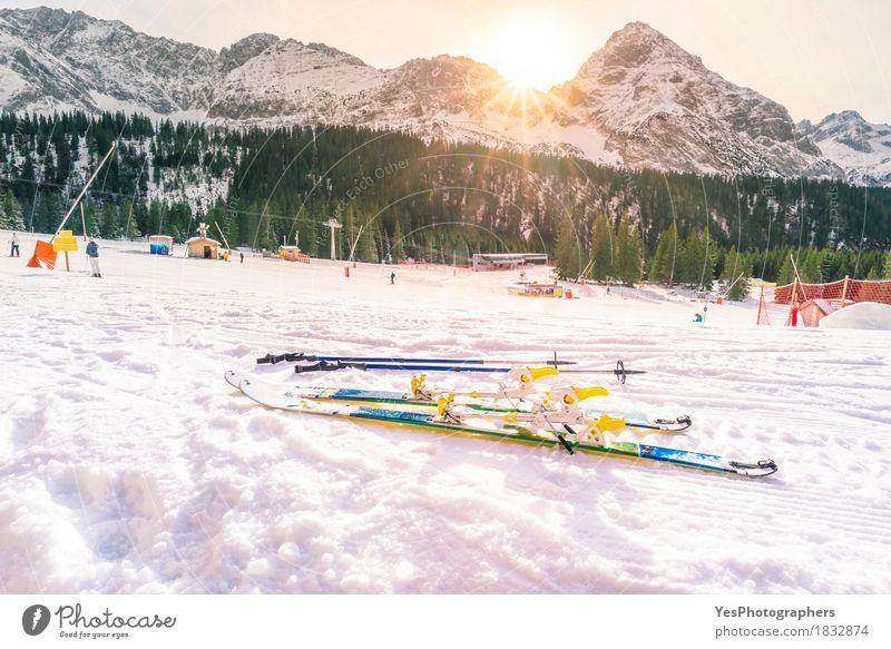 Ski slope and winter sunshine Nature Vacation & Travel Blue Christmas & Advent White Sun Tree Landscape Joy Winter Forest Mountain Life Sports Snow Freedom