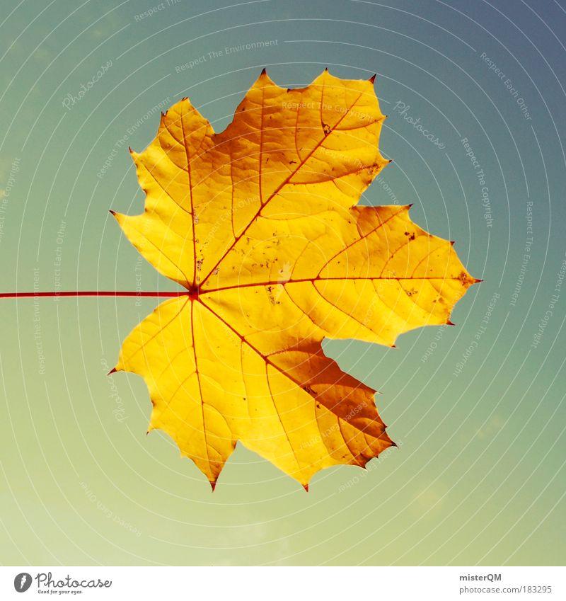 Sky Nature Beautiful Leaf Autumn Lighting Infancy Gold Natural Design Esthetic Symbols and metaphors Creativity End Seasons Wind