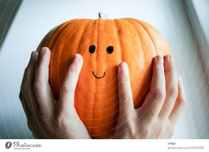 Pumpkin, satisfied with himself and the world Lifestyle Joy Leisure and hobbies Thanksgiving Hallowe'en Infancy Youth (Young adults) Hand Women`s hand 1