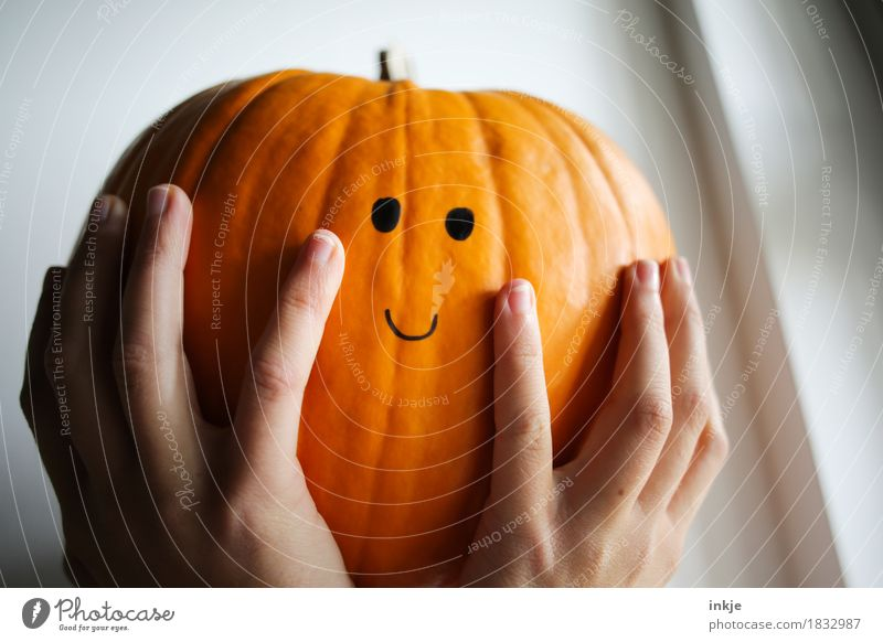 Pumpkin dreams of 31.10. Pumpkin time Joy Leisure and hobbies Thanksgiving Hallowe'en Girl Young woman Youth (Young adults) Woman Adults Infancy Life Face Hand
