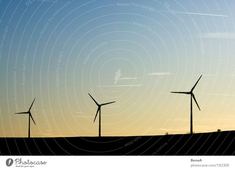 wind power Energy industry Success Technology Advancement Future Renewable energy Solar Power Wind energy plant Environment Nature Landscape Air Sky