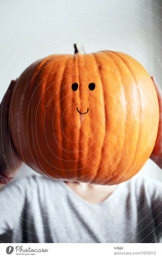 stubborn Friendliness Smiling Smiley Large Pighead Orange To hold on Face Pumpkin Pumpkin time Hallowe'en Cute Button eyes Uphold Funny