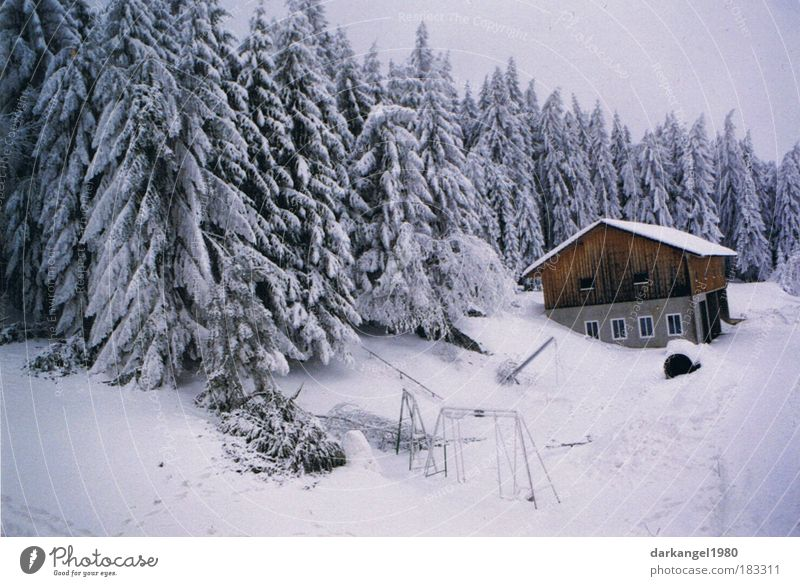 Beautiful Winter House (Residential Structure) Forest Cold Snow Landscape Moody Esthetic Village