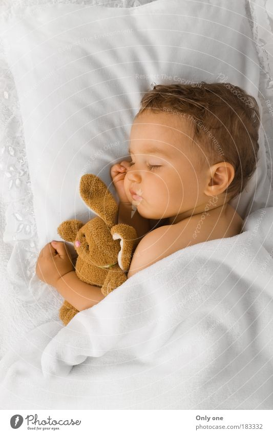 Baby K. Masculine Child Toddler Boy (child) 1 Human being 0 - 12 months 1 - 3 years Brunette Short-haired Toys Cuddly toy Sleep Embrace Warmth Emotions