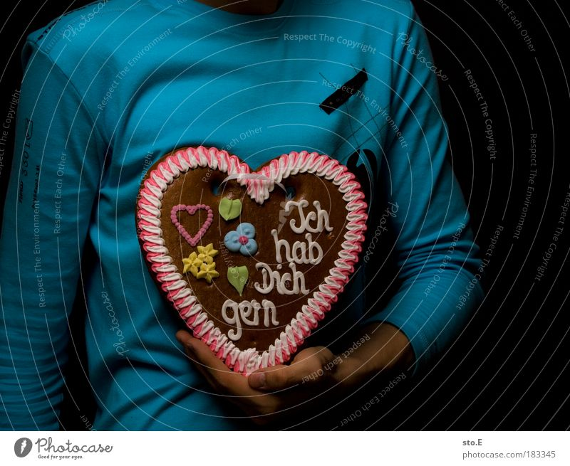 Human being Man Hand Winter Adults Love Gift Happy Friendship Together Arm Heart Masculine Nutrition Characters Sweet
