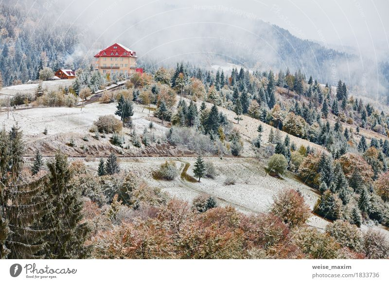 First snow in autumn. Snowfall in mountains. Snow and fog Nature Vacation & Travel Green White Tree Landscape House (Residential Structure) Far-off places Winter Forest Mountain Environment Yellow Meadow Autumn Natural