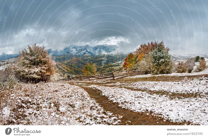 First snow in autumn. Snowfall in mountain village Sky Nature Vacation & Travel Green White Tree Landscape Red Clouds Far-off places Winter Forest Mountain Street Environment Yellow