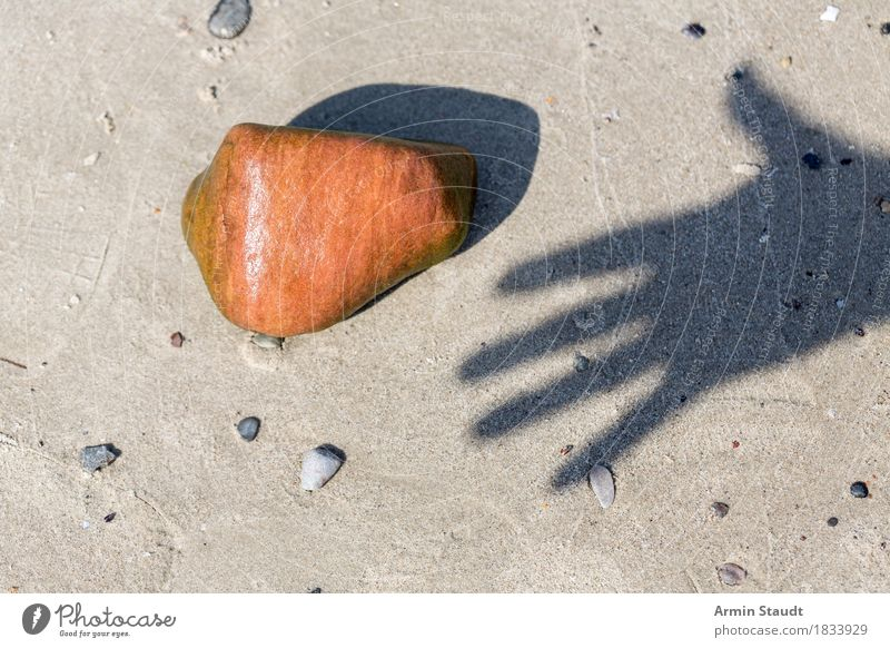 hand shadow stone Life Vacation & Travel Summer Summer vacation Beach Hand Fingers Nature Sand Beautiful weather Stone Touch Simple Wet Orange Anticipation