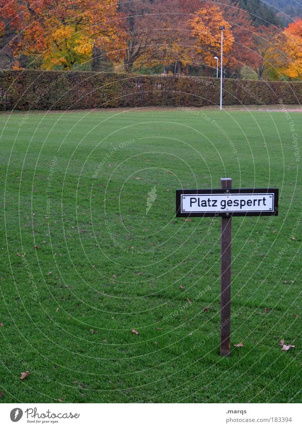 Tree Autumn Playing Grass Landscape Moody Signs and labeling Places Signage Bans Football pitch Warning sign Barred Sporting Complex