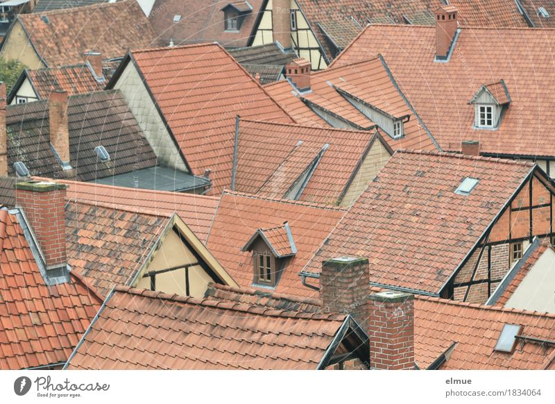 Roofscape (4) Old town House (Residential Structure) Window Chimney Tiled roof Roof ridge Half-timbered house Skylight Gable Authentic Historic Town Red