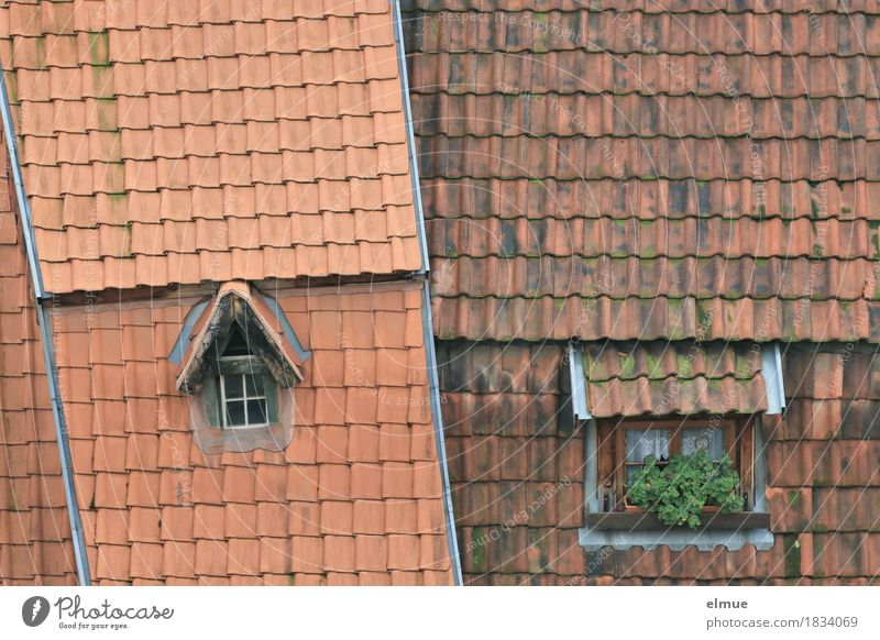 Roofscape (3) Living or residing Flat (apartment) Small Town Old town House (Residential Structure) Window Sharp-edged Historic Uniqueness Red Happy