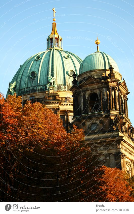 Old Beautiful Tree Leaf Autumn Freedom Architecture Orange Large Esthetic Church Monument Historic Dome Tourist Attraction