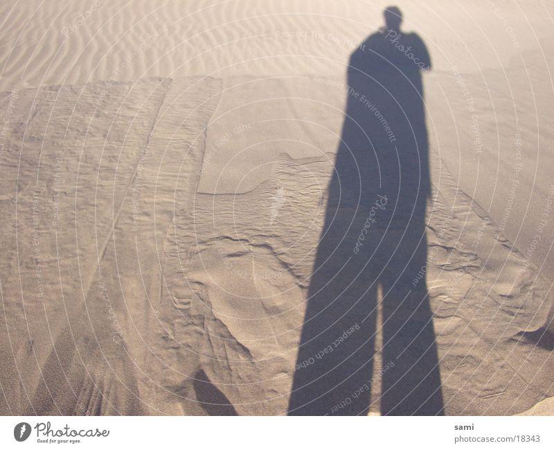 Mr. Sandman. Beach Beach dune Shadow Sahara Desert silhoutte