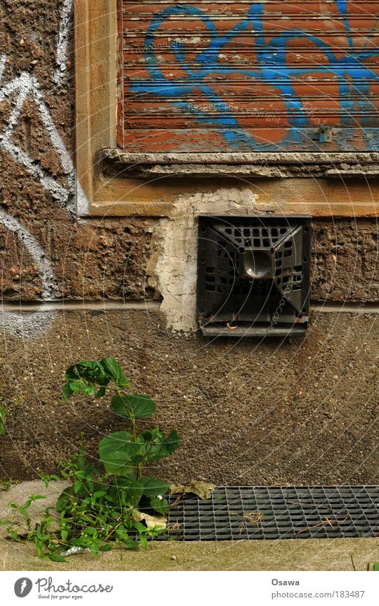 Old Plant House (Residential Structure) Window Wall (building) Architecture Building Germany Closed GDR Grating Heater Old building Foliage plant Heating East