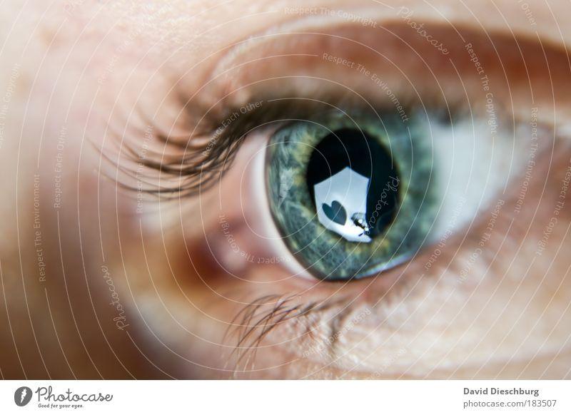 Human being Macro (Extreme close-up) Perspective Blue Green Eyes Close-up Heart Symbols and metaphors Observe Reflection Eyelash Pupil Vision Iris Heart-shaped