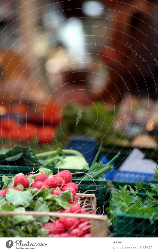 market cry Colour photo Exterior shot Day Central perspective Food Vegetable Nutrition Organic produce Vegetarian diet Healthy Life Quality Markets Market stall