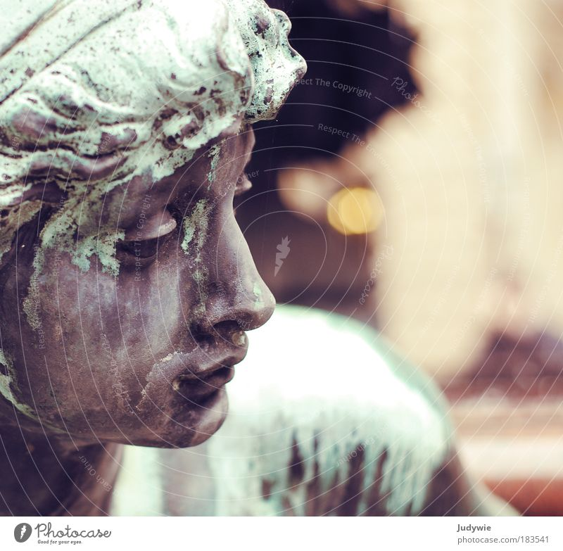 Bronze beauty Colour photo Subdued colour Exterior shot Copy Space right Day Twilight Shallow depth of field Portrait photograph Profile Beautiful Sightseeing