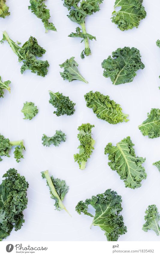 curly kale Food Vegetable Kale Kale leaf Nutrition Eating Organic produce Vegetarian diet Diet Fasting Healthy Eating Cook Fresh Green White Colour photo