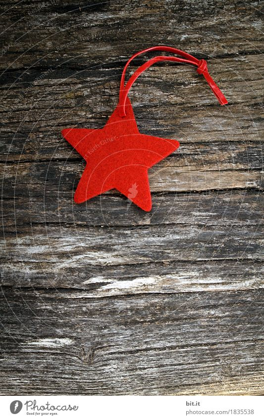Christmas & Advent Red Winter Wood Feasts & Celebrations Decoration Sign Tradition Christmas tree Handicraft Rural Rustic Christmas decoration Christmas star Felt Christmas figure