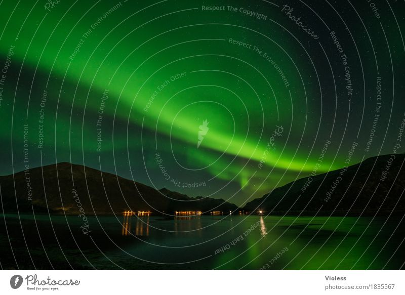 northern lights III Nature Sky Clouds Night sky Horizon Autumn Aurora Borealis Fjord Movement Exceptional Infinity Humble Mysterious Surrealism Light Shadow