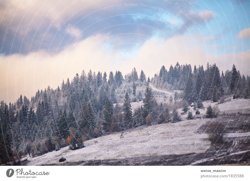First snow in autumn. Snowfall in mountains Nature Vacation & Travel Plant White Tree Landscape Clouds Winter Mountain Environment Lanes & trails Meadow Autumn Snow Rock Tourism