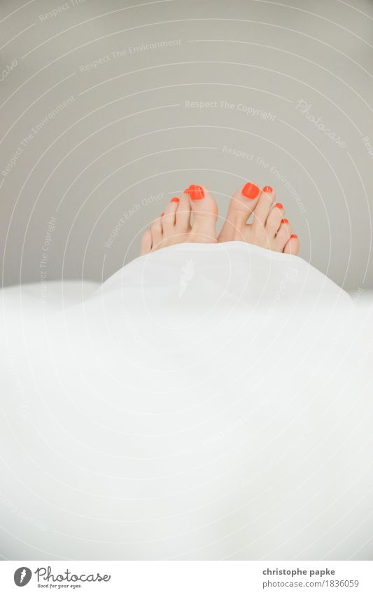 Peeping toes II Nail polish Well-being Relaxation Living or residing Flat (apartment) Bedroom Feminine Woman Adults Feet Toes Contentment Lie Duvet Beautiful