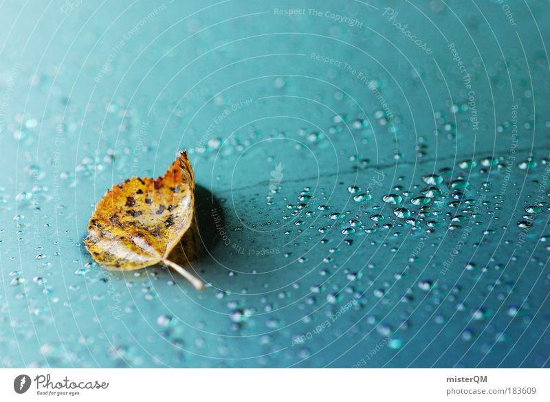Nature Beautiful Leaf Autumn Rain Weather Lie Wet Design Esthetic Abstract Drop Creativity Frozen Seasons Climate