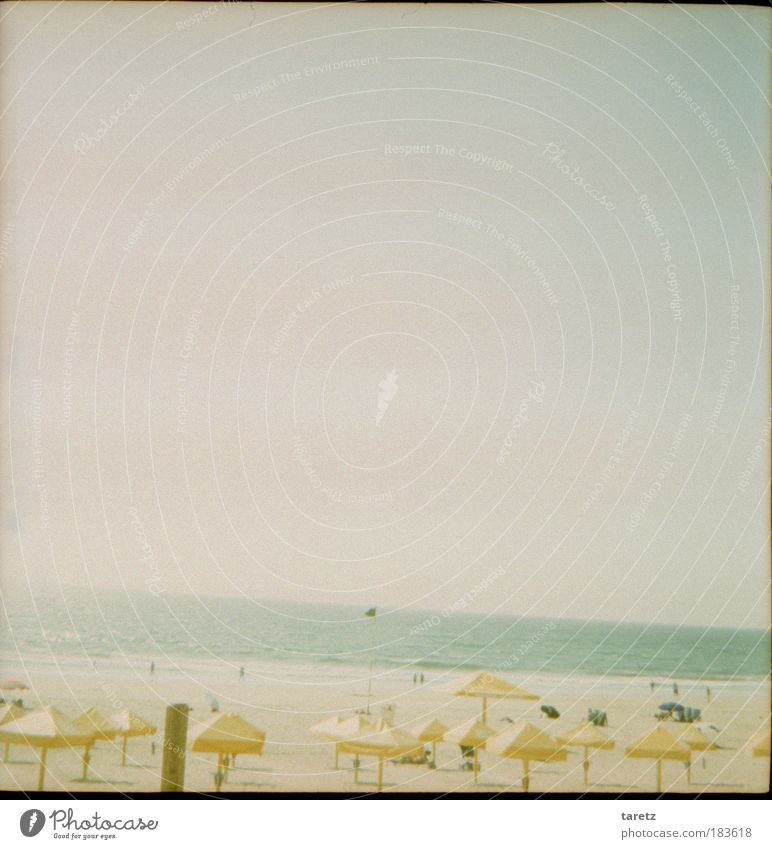 Sky Summer Beach Vacation & Travel Calm Cold Sand Coast Contentment Horizon Europe Sunshade Lomography Bad weather