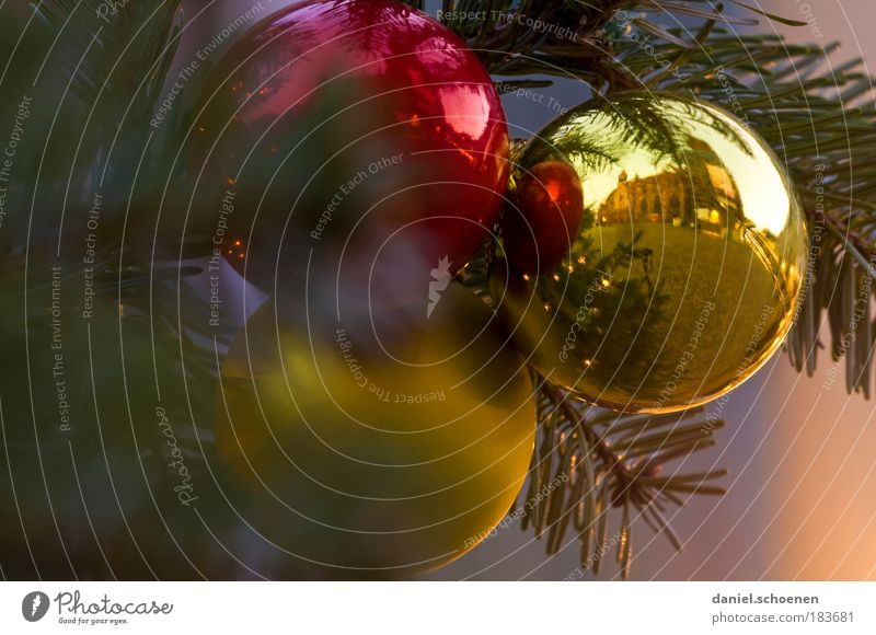 do you see the Freiburg cathedral in the right ball ? Detail Decoration Gold Sphere Peace Trade Culture Glitter Ball christmas tree Fir tree Christmas & Advent