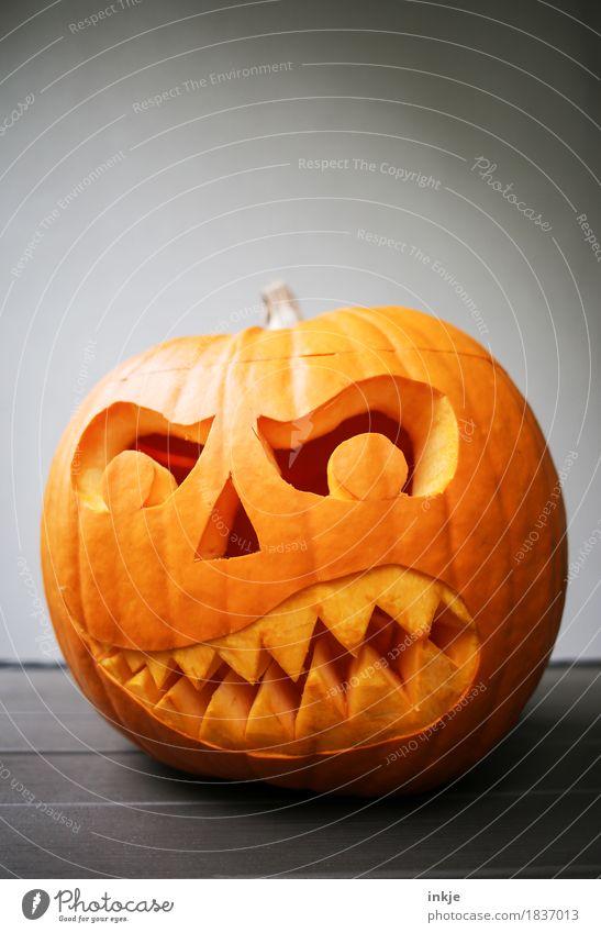 pumpkin head Pumpkin time Creepy Anger Evil Tradition Hallowe'en Graven Grimace Set of teeth Threat Orange Creativity Idea Dark Autumn Fear Scare Frightening