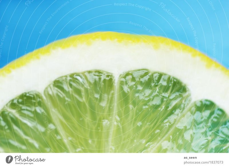 Blue Colour Summer White Sun Yellow Life Healthy Food Design Fruit Nutrition Fresh Beverage Turquoise Fragrance