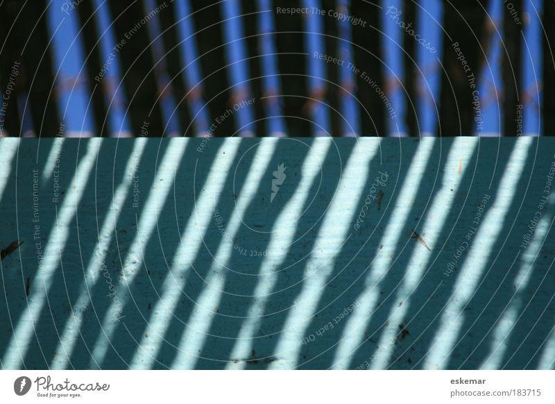 Blue Calm Colour Above Wood Line Contentment Bright Fresh Happiness Arrangement Esthetic Near Authentic Simple Stripe